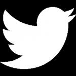 iconmonstr-twitter-1-240